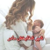 سال اول زنده گی نوزادن روز ۳۳/ شیر شفابخش مادر