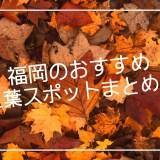 福岡 紅葉
