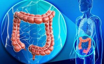 proktoloji hangi hastaliklara bakar ve proktoloji nedir