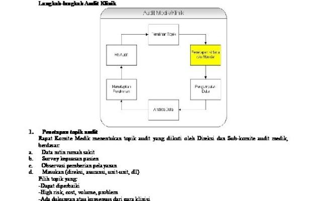 Contoh Laporan Audit Internal Puskesmas 600 Tips Cute766
