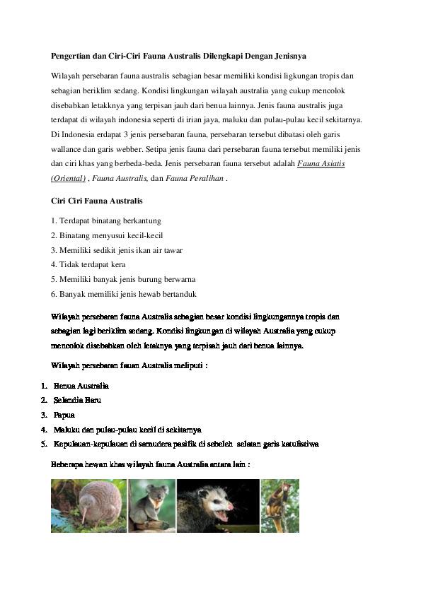 Ciri Ciri Fauna Australia : fauna, australia, Australis, [d0nvx3vnyeqz]