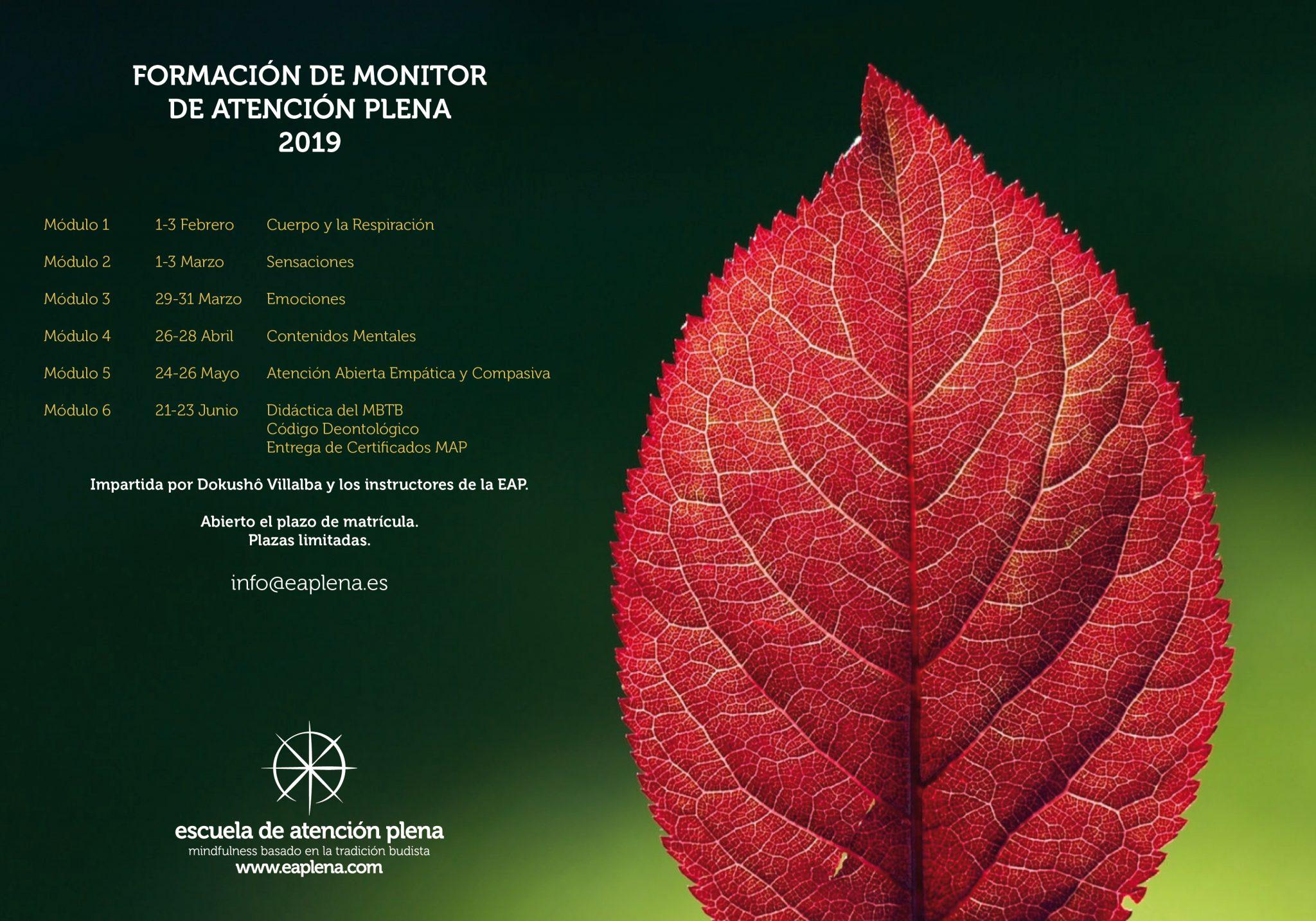 Formación de Monitor de Atención Plena 2019