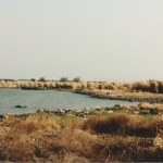 Pantai Cipta