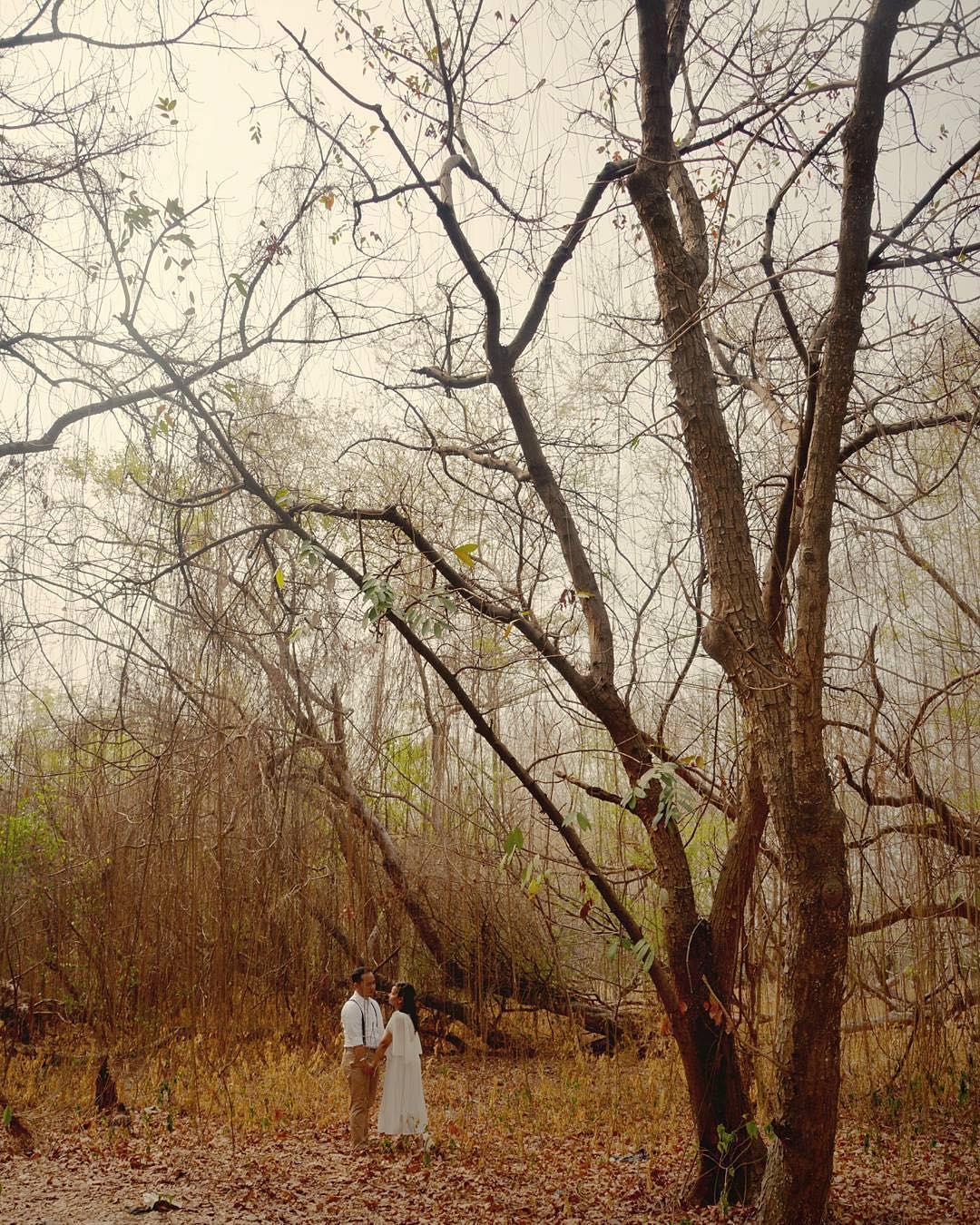 Hutan Kota Srengseng, Hutan Kota Srengseng Jakarta, Jakarta, Dolan Dolen, Dolaners