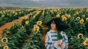 Taman Bunga Matahari Bantul, Taman Bunga Matahari Bantul Yogyakarta, Yogyakarta, Dolan Dolen, Dolaners