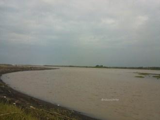 pantai pandansimo - muara kali progo (461)