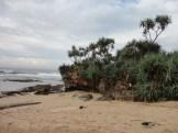 pantai sepanjang (184)