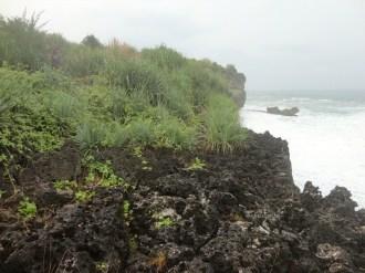 pelabuhan pantai gesing gunungkidul (39)