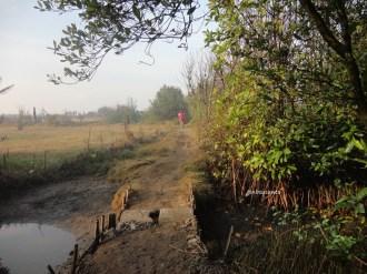 ekowisata mangrove baros kretek bantul (8)
