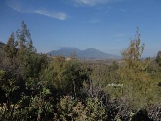 kawah gunung ijen banyuwangi (112)