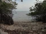 pantai bama, spot menarik lain di taman nasional baluran banyuwangi (23)