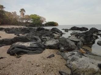 pantai bama, spot menarik lain di taman nasional baluran banyuwangi (29)