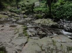 curug nangka taman nasional gunung halimun salak bogor (165)
