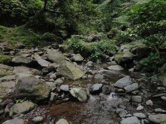 curug nangka taman nasional gunung halimun salak bogor (169)