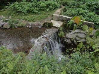 curug nangka taman nasional gunung halimun salak bogor (19)