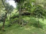 curug nangka taman nasional gunung halimun salak bogor (9)