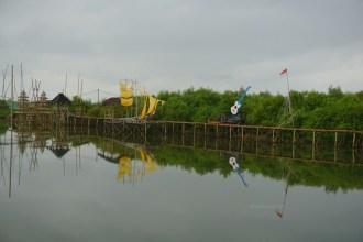 wisata hutan mangrove pantai jembatan api api kulonprogo yogyakarta (13)