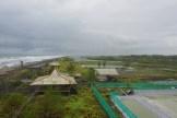 wisata hutan mangrove pantai jembatan api api kulonprogo yogyakarta (88)