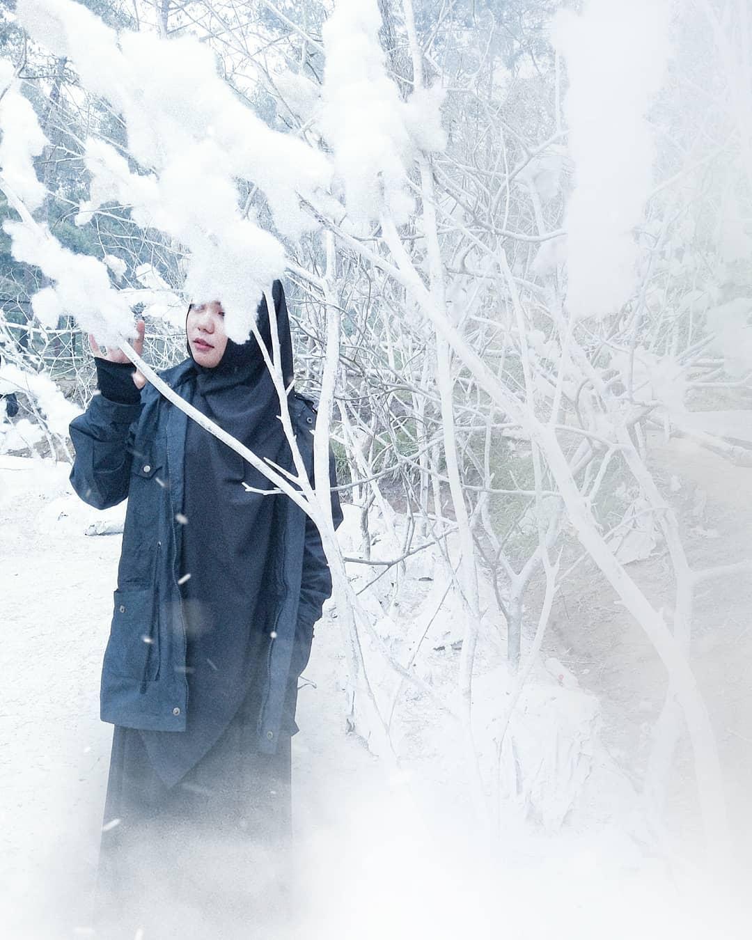 Lawu Park Salju : salju, Tiket, Masuk, 2021,, Penginapan