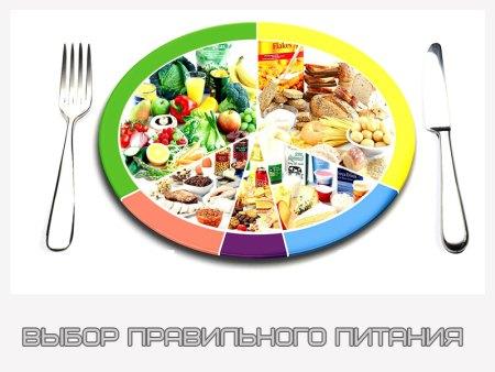 заказ правильное питание