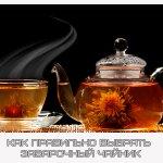 Как правильно выбрать заварочный чайник