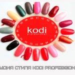 Студия Стиля Kodi Professional