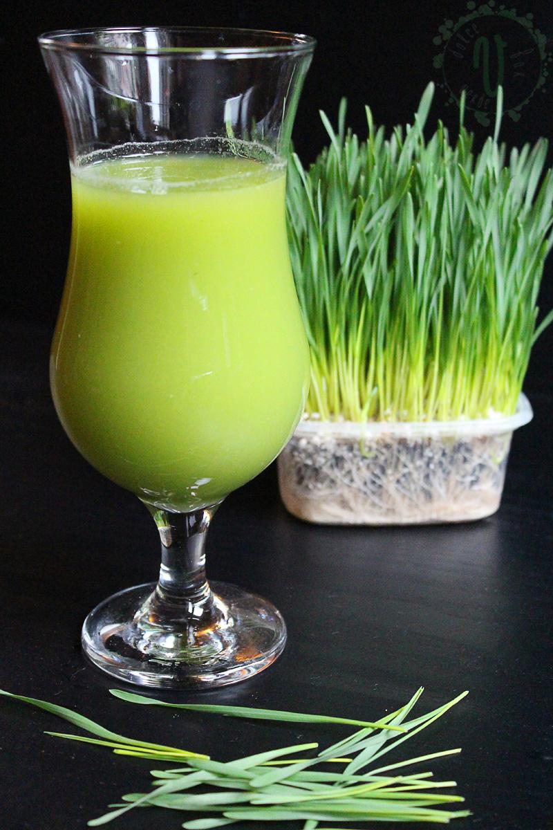 Suc iarbă de grâu