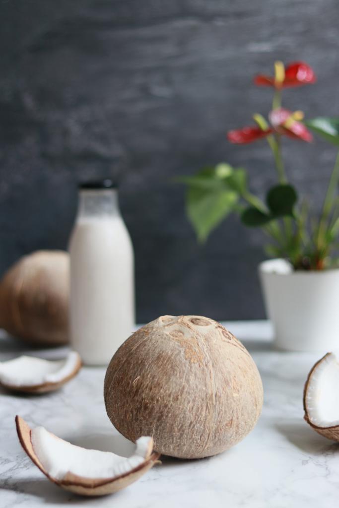 Lapte Vegetal de Cocos