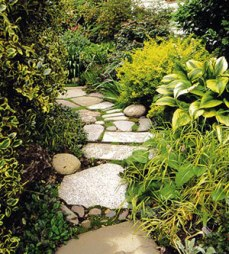 http://www.growingforyou.com/treadwell/treadwellideas.html