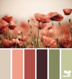 http://design-seeds.com/index.php/home/entry/poppy-tones1