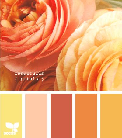 http://design-seeds.com/index.php/home/entry/ranunculus-petals