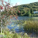 Gwernan Lake