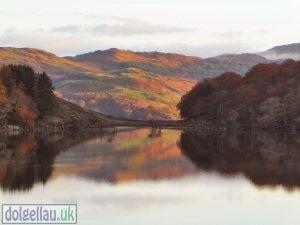 Llyn Cynwch on an Autumn Morning