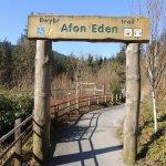 Afon Eden Trail, Coed y Brenin