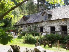 Gilfach Nature Reserve