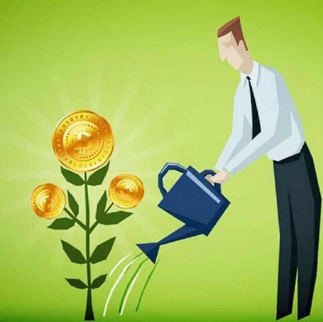 Watering your investment