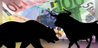 two bear and bull shadows as investment markets illustration