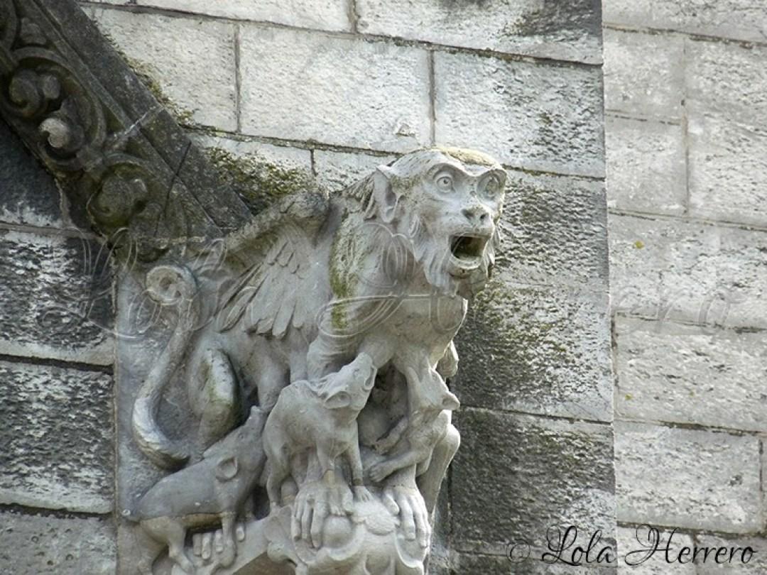 Gárgola Catedral Cork (Irlanda) 156