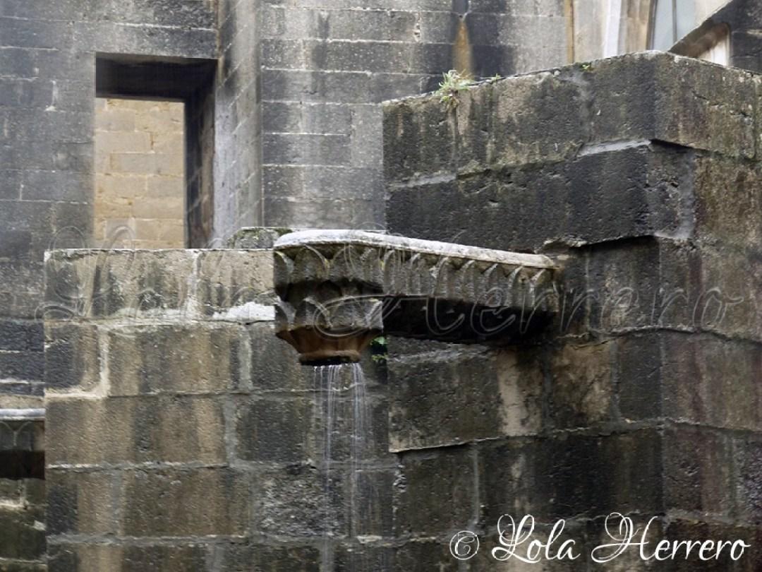 Gárgola Catedral Girona 55