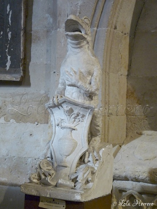 Catedral Salamanca-Museo Claustro (269)