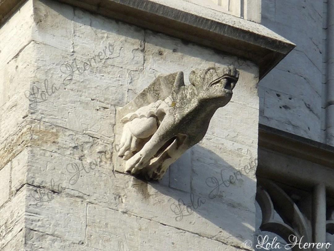 Gárgola Catedral Bruselas (Bélgica) (363)