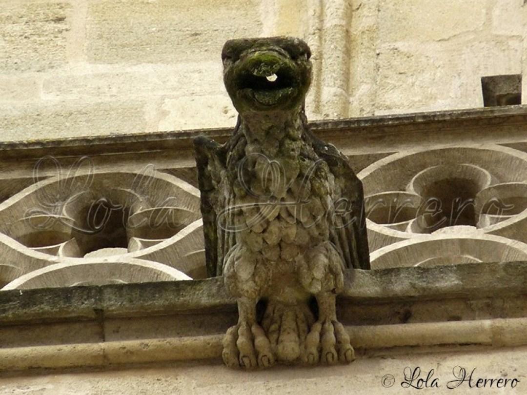 Gárgola Catedral Burdeos (Francia) (311)