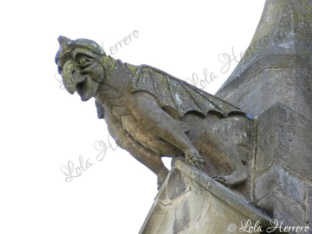 Gárgola Catedral Mirepoix (Francia) (360)