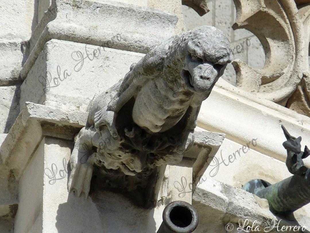 Gárgola Catedral Palencia (376)