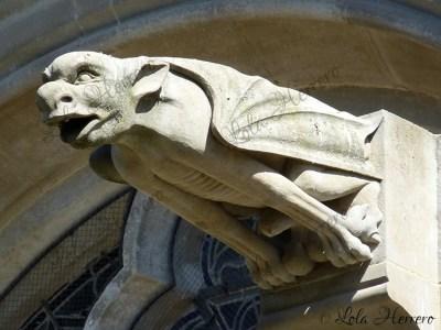 Gárgola de la Catedral de St. Michel de Carcassonne (Francia)