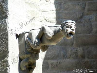 Gárgola de la Catedral de St. Michel (Carcassonne, Francia)