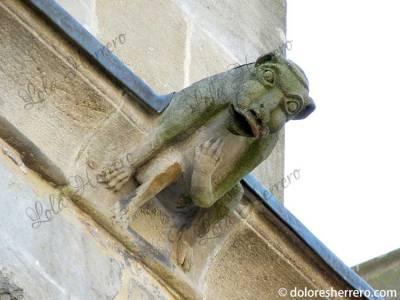 Gárgola de la Catedral de St. Maurice de Mirepoix (Francia)