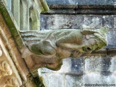 Gárgola de la Catedral de St. Étienne de Limoges (Francia)