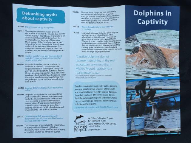 Anti Captivity Trifold Brochures