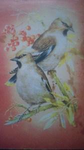 Блокнот с птичками